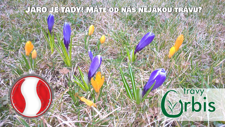 Jaro už dorazilo i k nám! - Spoltex - prodej podlahových krytin 9a7905baa36